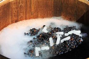 Gheata carbonica in viticultura